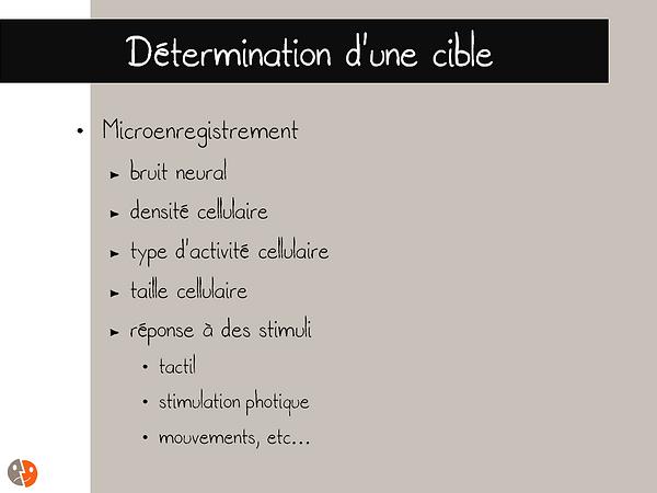 Détermination d'une cible - Microenregistrements (microrecording)