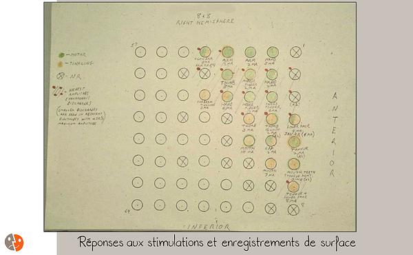 Grille corticale: tableau des résultats
