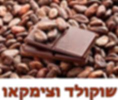 שוקולד וצימקאו.jpg