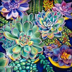 Succulents Abundant