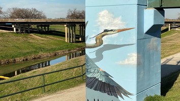 Painting the River: A Trinity Trails Mural Gallery Opportunity