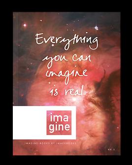 IBFBrochure-Imagine.png