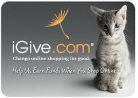 igive with kitten.jpg