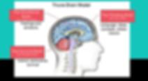 Triune Brain Thumbnail.png