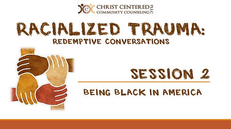 Racialized Trauma Screen Shots-session 2