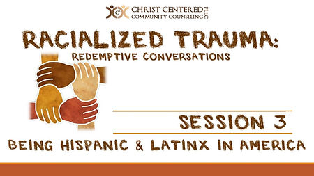 Racialized Trauma Screen Shots Session 3
