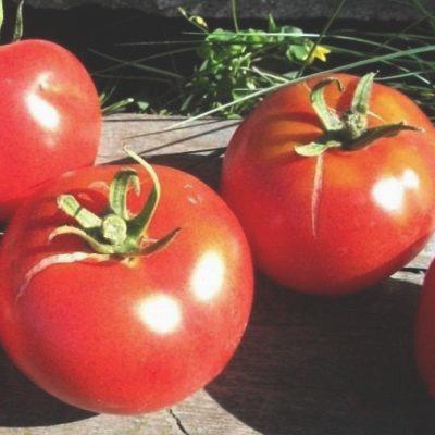 Tomate québécoise