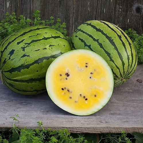 Melon d'eau jaune