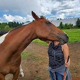 Session individuelle en mieux-être facilité par le cheval