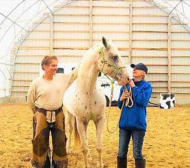 Leadership facilité par le cheval