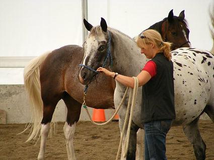 Horsemanship en doube mieux-être