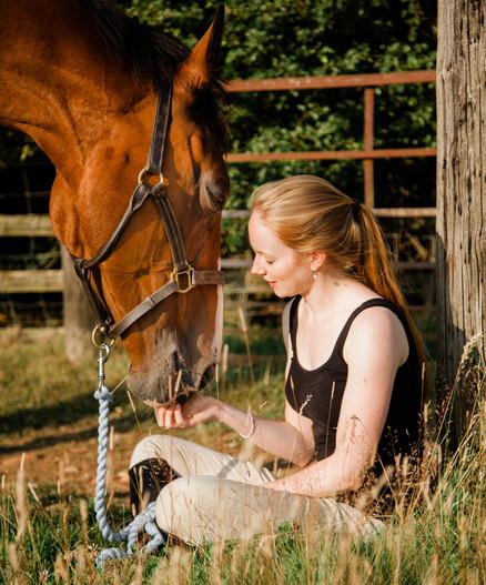 Equine Photo Shoot