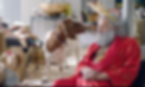 Kayli Vee Levitan, award-winning creative copywriter worked on takealot.com gave santa clause a holiday, so on his big break he got very hungover and sat on the floor with a goat.