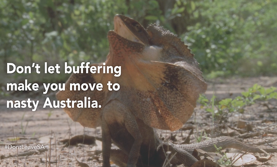 Kayli Vee Levitan, award-winning creative copywriter, created an MWEB campaign telling the dear south africans who moved overseas that they can come home to world class internet and leave the giant australian lizards behind