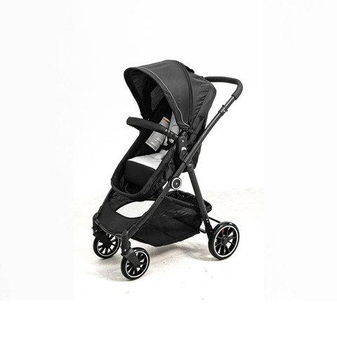 2-in-1 Reversible Stroller