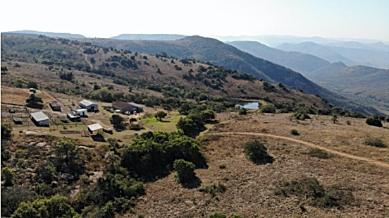 Intsaba farm.png