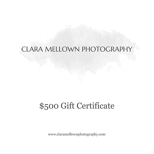 Gift Certificate: $500