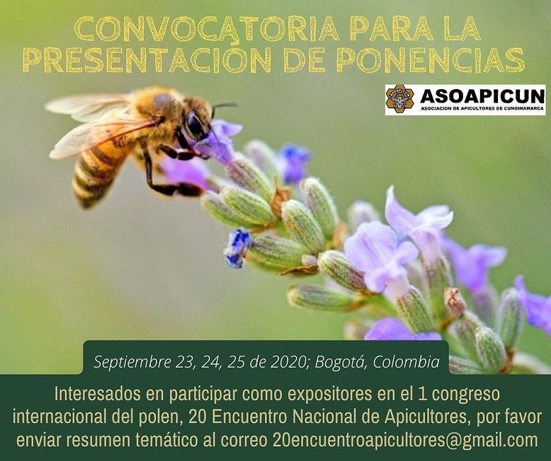 Fotografía_Miel_Cuchararón_Evento_Public