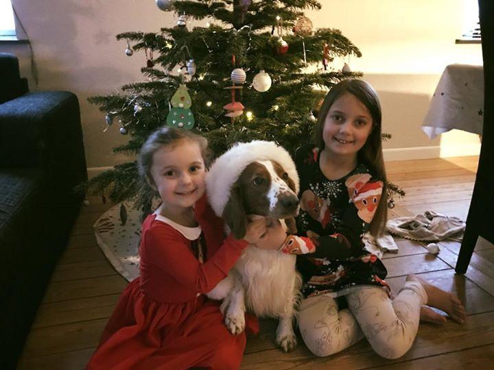 Glædelig jul til jer alle fra os 🎄❤️.jp
