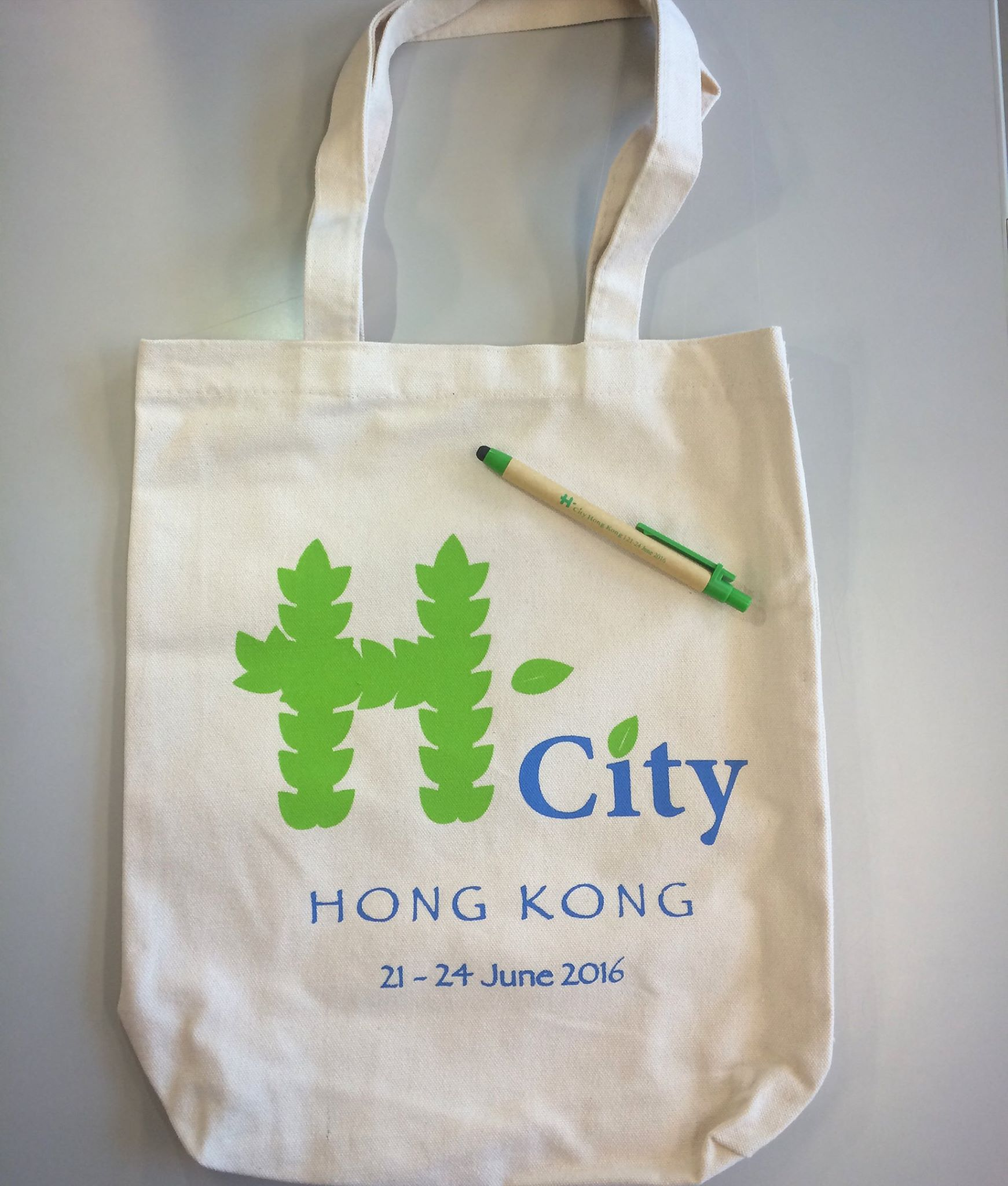conference bag (h -cities)