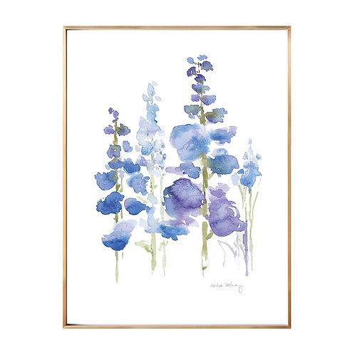 Delphinium  (Giclée quality prints $18-$82)
