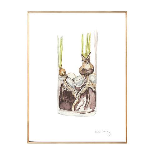 Roots  (Giclée quality prints $18-$82)