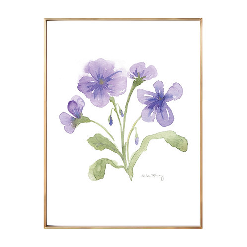 Purple Pansies (Giclée quality prints $18-$82)