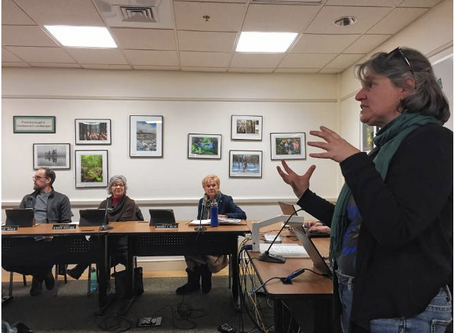 Peterborough Solarize Leader Talks to Select Board
