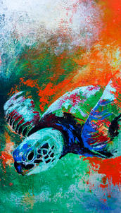 Sea Turtle 3.jpg