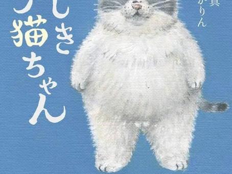 かなしきデブ猫ちゃん 文庫版新発売!集英社文庫