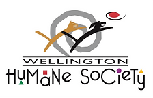 2020-logo-final_0.png