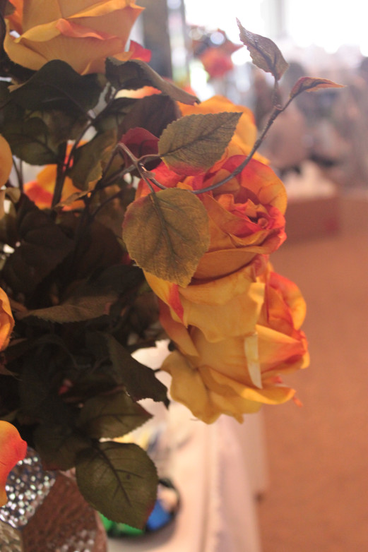 Fall Roses.JPG