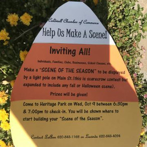 Make a Scene- Downtown Decorating