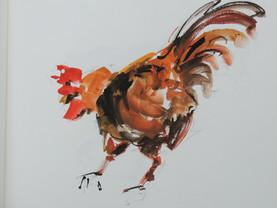 Coq de Marie-Thérèse Douarin au Moustoir - Aquarelle