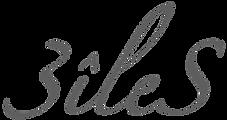 logo sans fond - copie 2.png