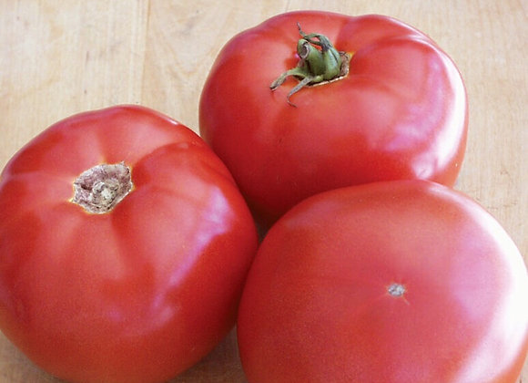 Tomate rouge (gros pot)