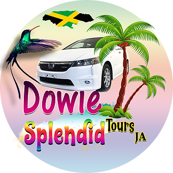 Dowie Tours 2logo all.png