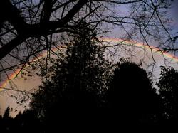 Oregon City Rainbow