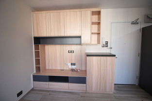 TV and shoes cabinet