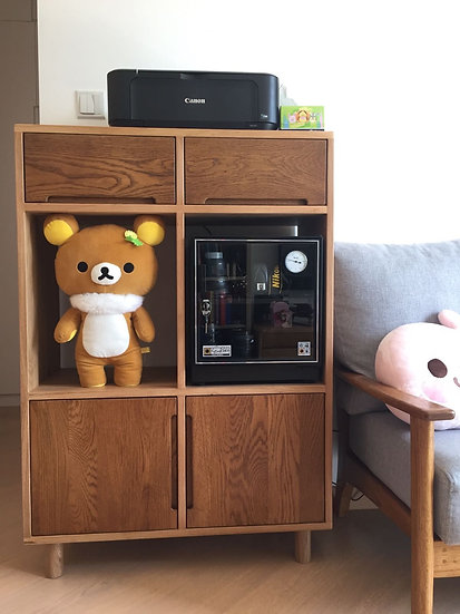 Pea Low Cabinet