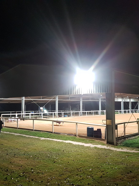 Arena lights are on!