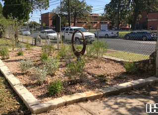 Butterfly Garden at Blackshear Elementary