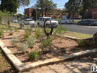 Butterfly Garden at Blackshear Elementary