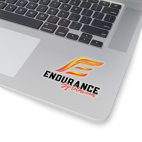 Endurance Logo Print - Kiss-Cut Stickers
