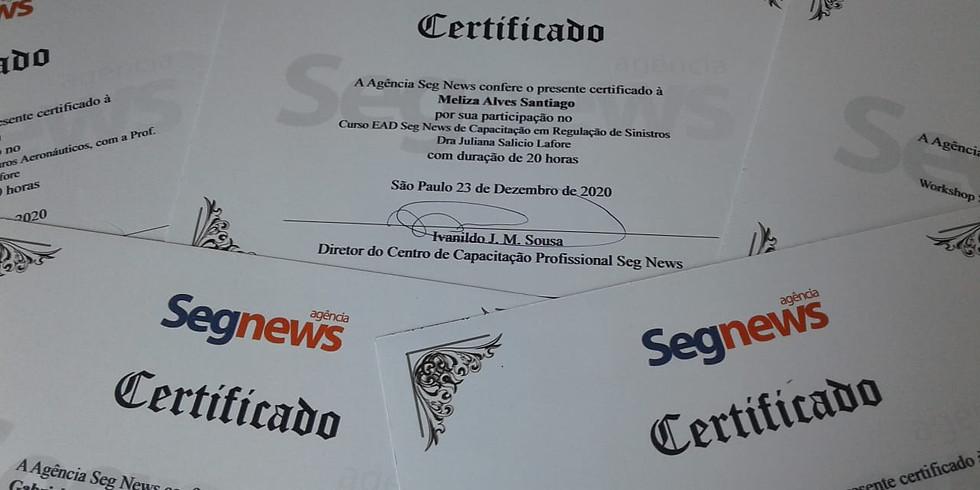 CURSO EAD BÁSICO DE GESTÃO DE SEGUROS E BENEFÍCIOS CORPORATIVOS