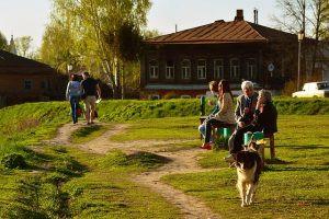 BLUE ZONES: Os lugares onde as pessoas vivem mais
