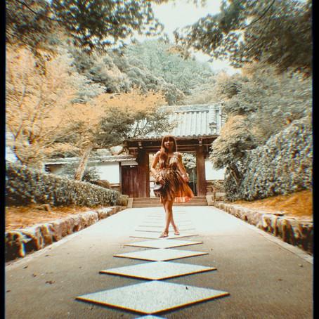 Zen and Tea: A (Virtual) Temple Retreat