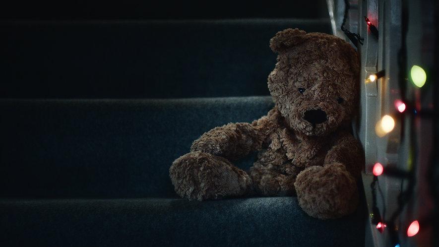 Unstuffed bears PR film visual.jpg