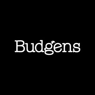 Budgens_Mono.jpg
