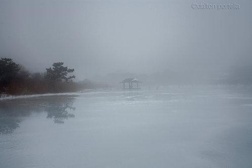 Fort Pond Fog